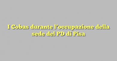 I Cobas durante l'occupazione della sede del PD di Pisa