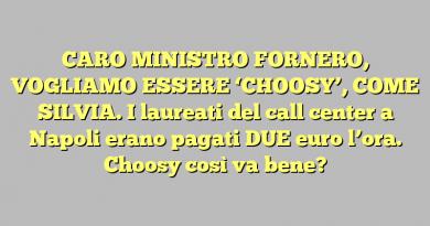 CARO MINISTRO FORNERO, VOGLIAMO ESSERE 'CHOOSY', COME SILVIA. I laureati del call center a Napoli erano pagati DUE euro l'ora. Choosy così va bene?