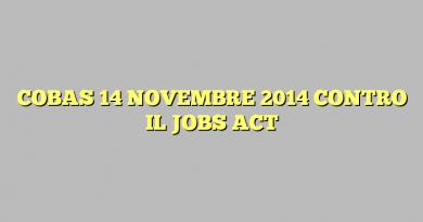 COBAS 14 NOVEMBRE 2014 CONTRO IL JOBS ACT