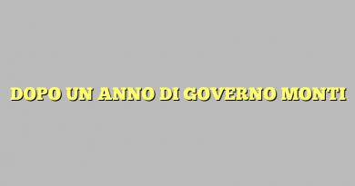 DOPO UN ANNO DI GOVERNO MONTI