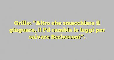 """Grillo: """"Altro che smacchiare il giaguaro, il Pd cambia le leggi per salvare Berlusconi""""."""