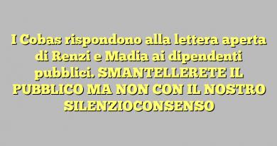 I Cobas rispondono alla lettera aperta di Renzi e Madia ai dipendenti pubblici. SMANTELLERETE IL PUBBLICO MA NON CON IL NOSTRO SILENZIOCONSENSO