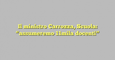 """Il ministro Carrozza, Scuola: """"assumeremo 11mila docenti"""""""