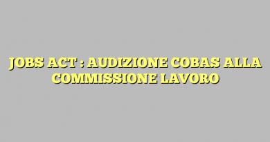 JOBS ACT : AUDIZIONE COBAS ALLA COMMISSIONE LAVORO