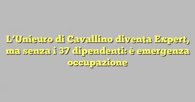 L'Unieuro di Cavallino diventa Expert, ma senza i 37 dipendenti: è emergenza occupazione