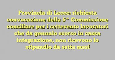 Provincia di Lecce: richiesta convocazione  della 5^ Commissione consiliare per i settecento lavoratori che da gennaio scorso in cassa integrazione, non ricevono lo stipendio da sette mesi